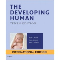 The Developing Human: Clinically Oriented Embryology (International Edition)