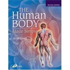Human Body Made Simple