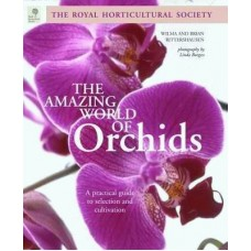 Amazing World of Orchids
